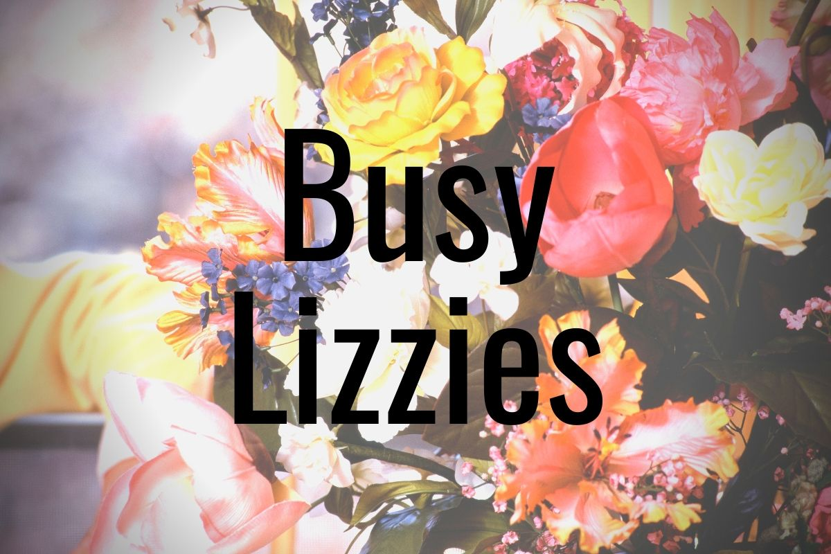 Read more about the article Busy Lizzies
